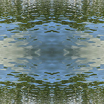 Manatee Waters 2. Deering Estate. Nature'e Energy Reflections series by Debra Cortese