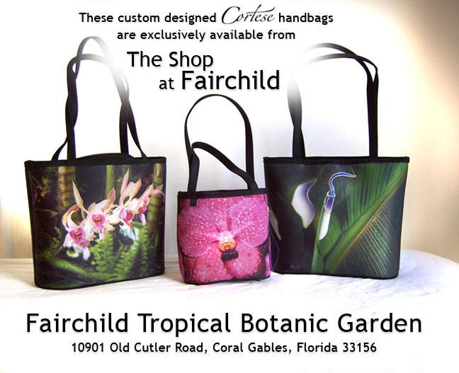 Cortese Handbags designed exclusively for The Shop at Fairchild