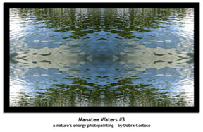 Manatee Waters #3