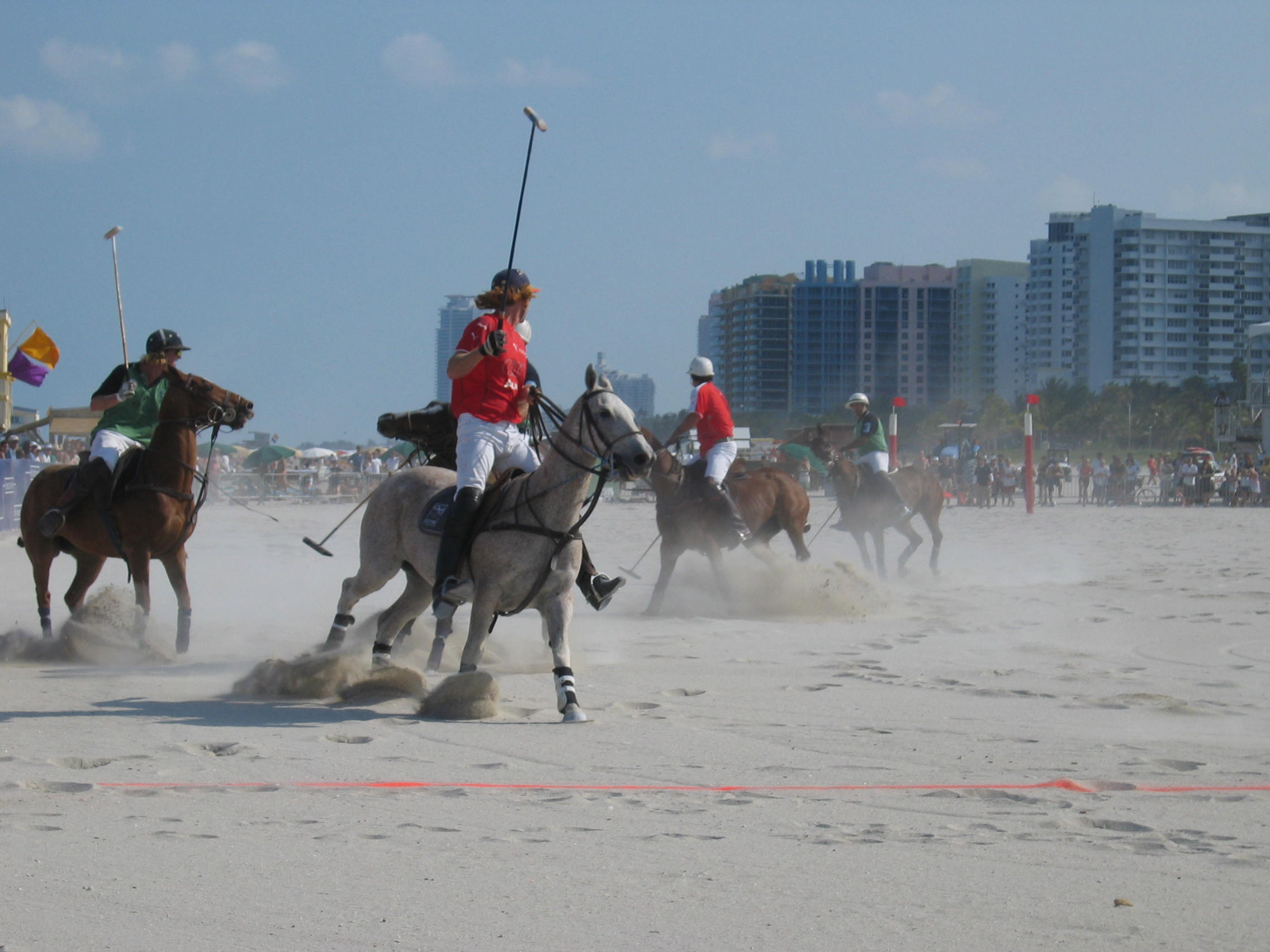 Polo Ponies on Miami Beach by Debra Cortese