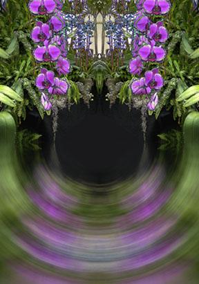 Fuschia Orchid Cascades Swirl