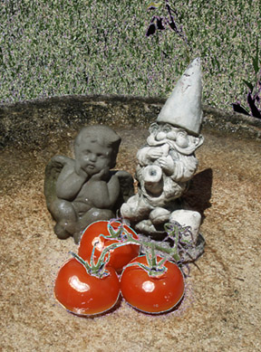 Angel, Gnome and Tomatoes, photopainting by Debra Cortese
